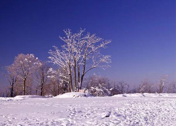 圣索菲亚教堂在哪_不瞒你说,我想去哈尔滨过一个白色的冬天-哈尔滨旅行社_哈尔滨 ...